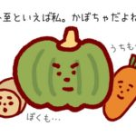 冬至の食べ物の由来は?かぼちゃはなぜ?こんにゃくでもいいの?