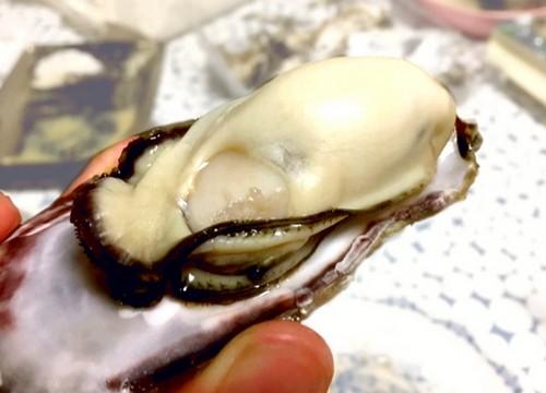 と 牡蠣 食べ 過ぎる 牡蠣と痛風|食べ過ぎが原因となる食べ物なのか
