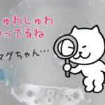 洗たくマグちゃんをクエン酸でメンテナンス!雑に!!