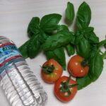 プチ家庭菜園の収穫【トマトとバジル】つるむらさきも植えました